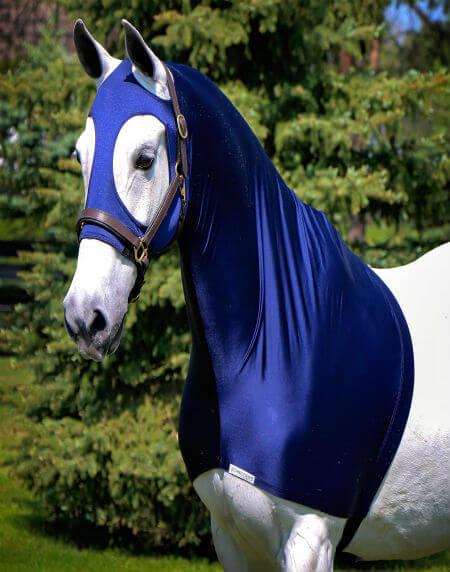 ניס ציוד לסוסים | בשביל הרוכבים - ציוד רכיבה ולסוסים PI-11